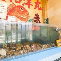 """""""店内"""" 生簀で管理している貝類はぷりっとジューシーです!"""
