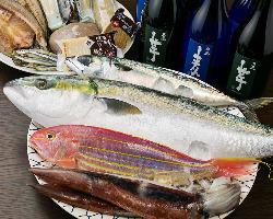[食材にもこだわる] お酒もすすむ全国の山海の幸を使った料理♪