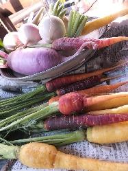産地直送の新鮮野菜&有機野菜はカラダに優しく味わい濃厚!