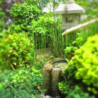 風情ある中庭を臨む、完全個室(8名様迄)