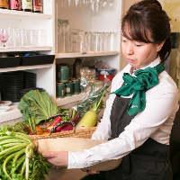 [野菜ソムリエ厳選] 女将が選んだ野菜は、お寿司の好パートナー