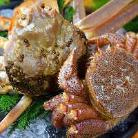 新鮮ずわい蟹をご用意しております
