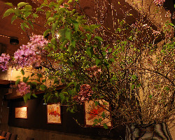 落ち着いたライティングと季節ごとの花で、店内をお洒落に演出。