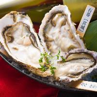 黒毛和牛炙り寿司。適度にのった脂がお口の中でとろけます!