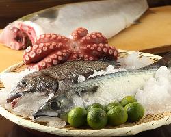 【鮮度抜群!】 旬の鮮魚を熟練技で絶品料理に仕上げます