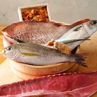 築地直送の鮮魚は旬のものが多数!生でも食べられる鯨肉も◎