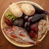 豊洲や築地場外まで出向き目利きする食材は旬を大切にしています