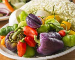 【契約農家直送】 季節の新顔野菜など珍しい野菜がいっぱい!
