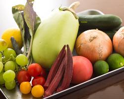 二宮などの農産直売所で買う野菜は不揃いながら味と鮮度は抜群。