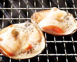 いつでもどこでもワイワイ全国各地の新鮮魚介を浜焼きで♪