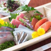 水揚げされたばかりの獲れたて鮮魚を刺身でご提供いたします