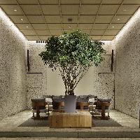 シンプルながらハイセンスな空間に、ひときわ目を引く植物!!