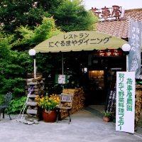 レストラン隣の自家農園では季節の野菜を収穫しています♪