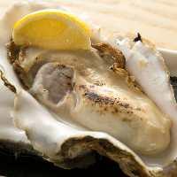 石川県産の牡蠣。