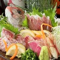 毎朝川崎北部市場より旬な魚を厳選!まずはお刺身でどうぞ!