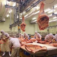 《職人がカット》 熟成した熟成肉を職人さんがカット♪