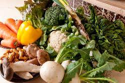 有機栽培で育てた自然の恵みたっぷりなお野菜も自慢です。