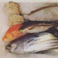 当店の自慢は新鮮鮮魚!職人技でさばく魚料理は格別です