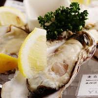 国内・海外産合わせて常時10種類の牡蠣を一年中楽しめます!