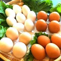 今しか食べられない拘りの地卵を食べに来てください!