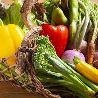 料理には農園直送・農薬不使用の野菜を使用しています