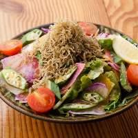【京野菜】 旬野菜を多数使用!彩りが美しいサラダを前菜に