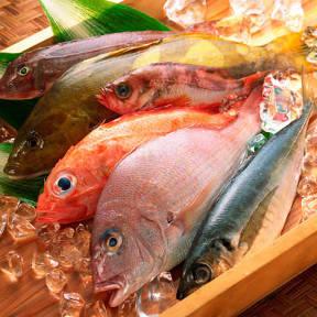 完全個室と厳選肉料理と日本酒 丸吉酒場 柏西口店の画像