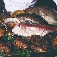 活伊勢海老、活鮑、世界の三大珍味など贅沢な食材もご準備あり。