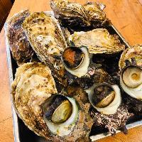 魚だけではなく貝も大人気!