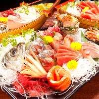 当店の鮮魚は全て厚切り♪九州直送朝獲れ鮮魚が旨い!!