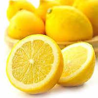 レモンを使用したオリジナルサワーは15種類!!