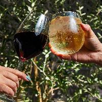 平日はワインやハイボールが飲み放題のプラン(1,500円)で乾杯!