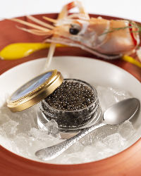 キャビアやオマール海老が持ち合わせる本物の素材力を一皿で表現