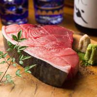 ◆本鮪料理◆ トロ・赤身が一皿で愉しめる【断面刺し】