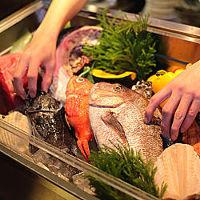 鮮度抜群の新鮮素材を 使ったお料理をご堪能下さい。