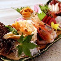 北海道の魚介を盛り合せで楽しむ♪
