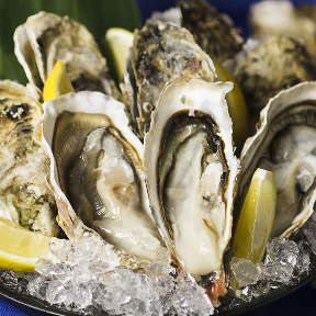 鯖と牡蠣と日本酒 居酒屋うおっと