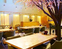 満開の桜の木の下でお食事ができます。