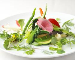 北海道産を中心とした野菜をシンプルにいただく前菜。