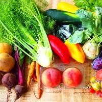 野菜は、主に北海道産の旬野菜をふんだんに取り入れております。