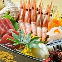 厳選された鮮度抜群の魚介は食べなきゃ損!定番人気メニュー!