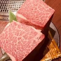 贅沢!!期間限定松阪牛が入ったコース 6500(税別)