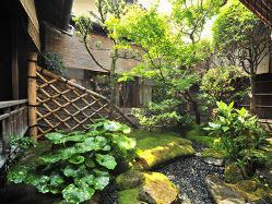広間横の美しい庭