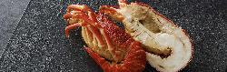 ロブスターやホタテ焼、小アワビなど海鮮も充実☆