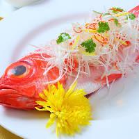 季節の彩りを料理で表現!旬の美味を楽しめる期間限定のコース
