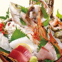 木津卸売市場で料理長が新鮮な魚介類を毎日仕入れてます