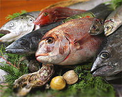 有田漁港産の新鮮な魚介を せいろ蒸しでどうぞ★