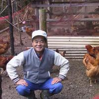 養鶏場から直接仕入れ!確かな産地の、新鮮な地鶏をご用意!