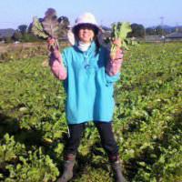 <産直野菜>生産者が作る本物の野菜を、職人が心を込めて調理。