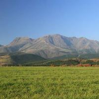 九州高原牧場の広大な大地で育った和牛を使用。